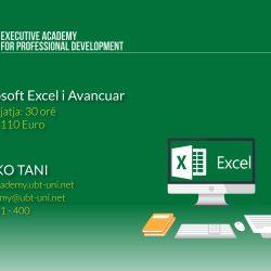 Microsoft Excel i Avancuar